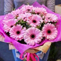 11 розовых гербер в красивой упаковке