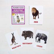 """Обучающие карточки """"Животные жарких стран"""" 12шт"""