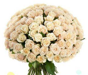 51 и 101 кремовая роза 60 см.