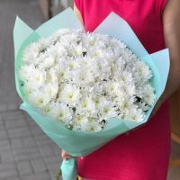 11 белых хризантем в красивой упаковке