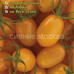 Томат Северное чудо оранжевое черри Northern miracle orang авторский Мязиной