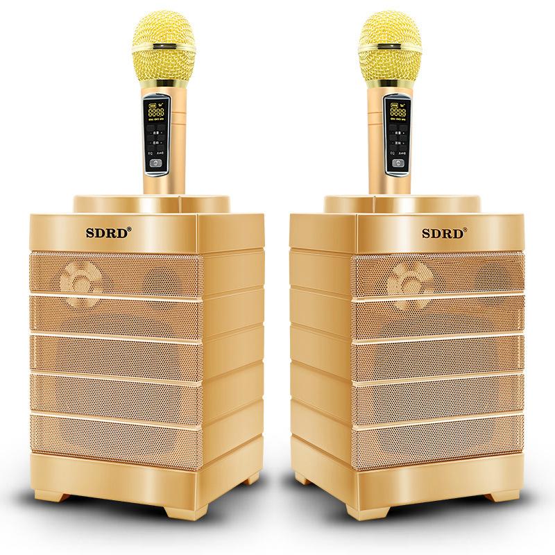 SDRD SD-128 Золото Караоке система