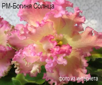 РМ-Богиня Солнца (Н.Скорнякова)