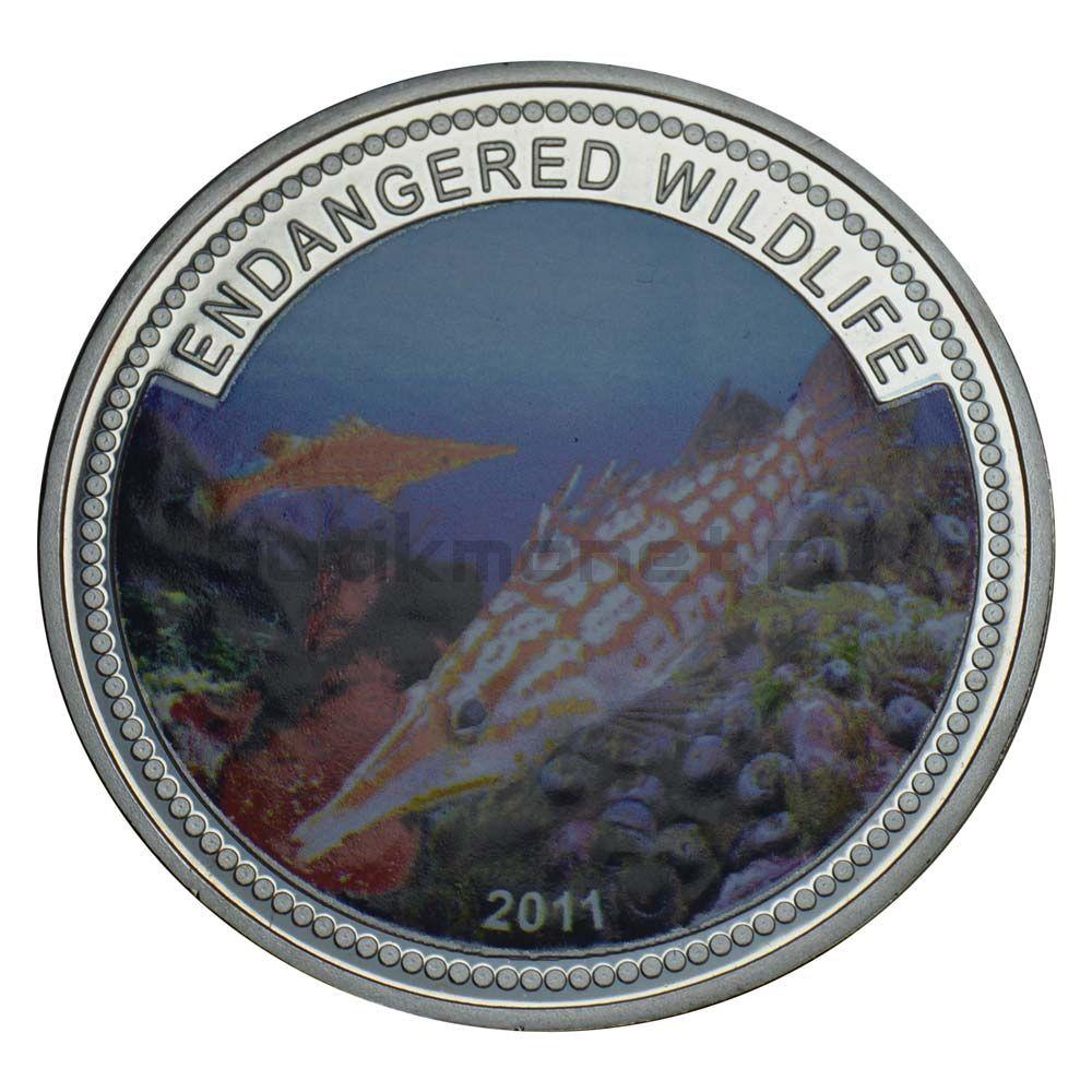 1 доллар 2011 Палау Длиннорылый кудрепер (Вымирающие виды)