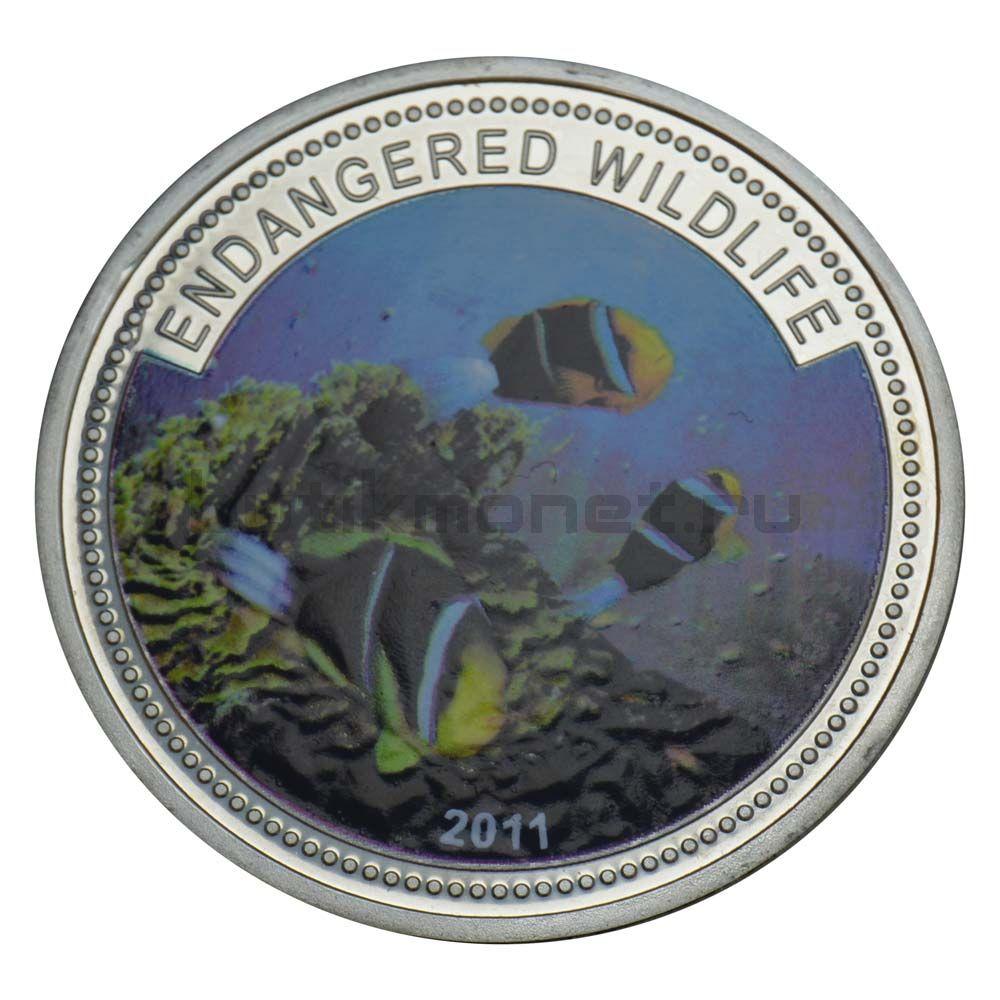 1 доллар 2011 Палау Рыба-клоун (Вымирающие виды)