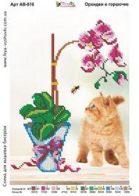 Фея Вышивки АВ-616 Орхидеи в Горшочке схема для вышивки бисером купить оптом в магазине Золотая Игла
