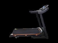 Беговая дорожка электрическая ROYAL Fitness RF-6