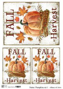 Pumpkins set 1
