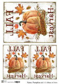 Pumpkins set 1-1