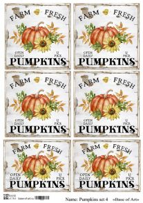Pumpkins set 4