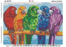 ВП-407 Фея Вышивки. Цветные Попугаи. А3 (набор 1750 рублей)