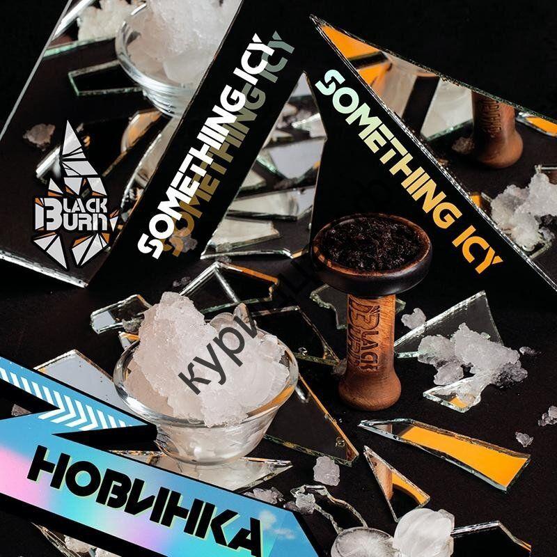 Black Burn Something Icy (Черный Берн Что-то Холодное) 1 гр