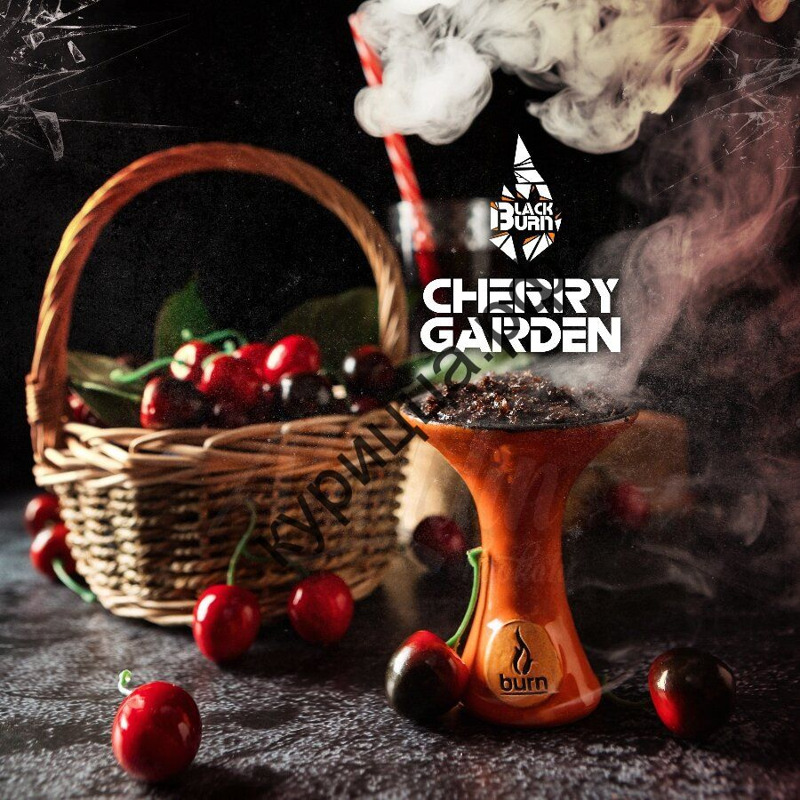 Black Burn Cherry Garden (Черный Берн Вишневый Сад)1 гр