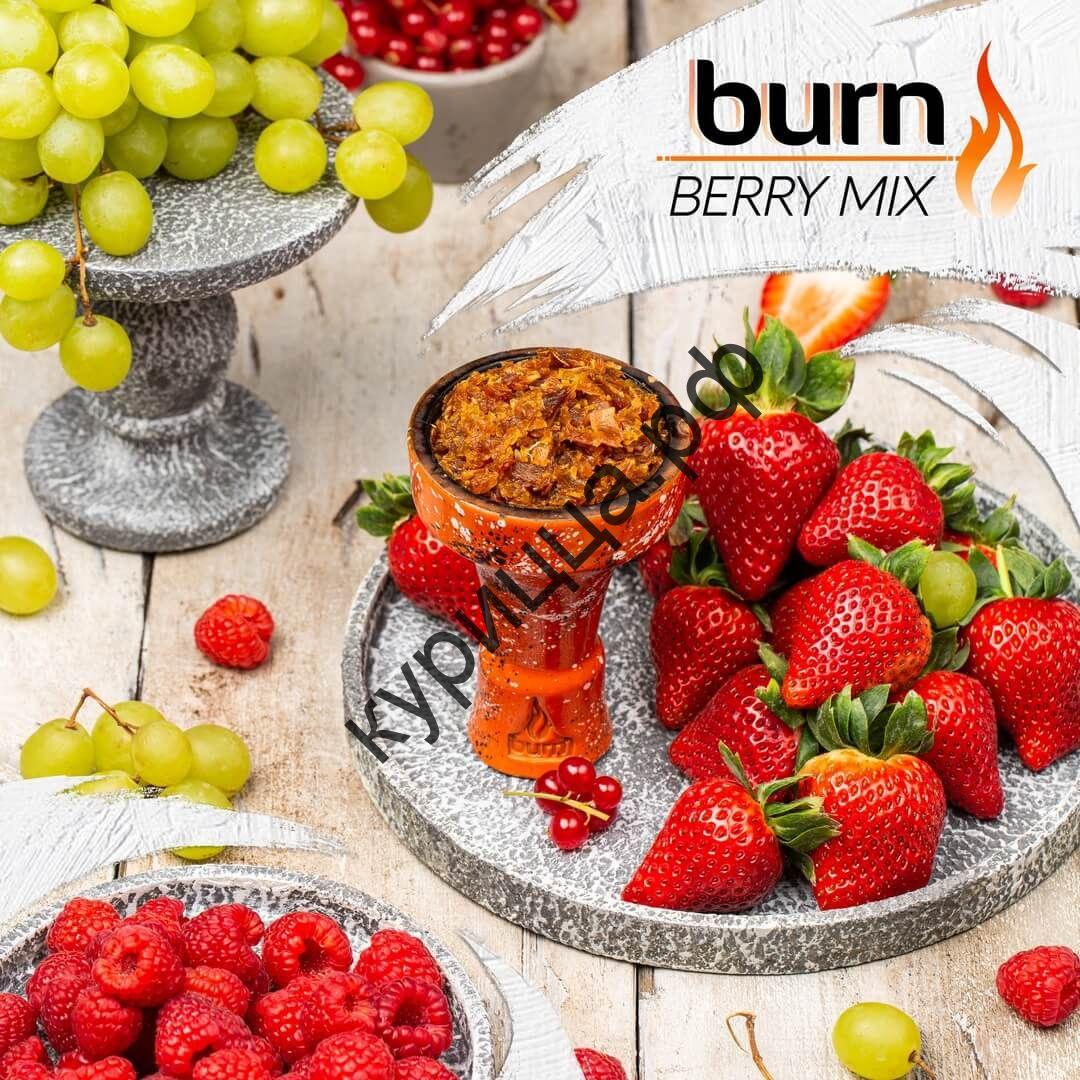 Burn Berry Mix (Ягодный Ред Микс)1 гр.