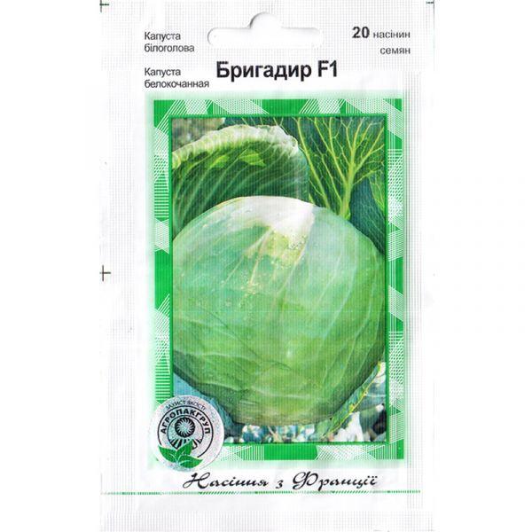 """""""Бригадир"""" F1 (20 семян) от Clause, Франция"""
