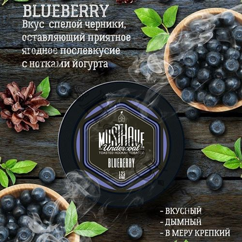 Must Have  (25gr) - Blueberry