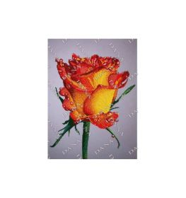 Dana DANA-3507 Роза схема для вышивки бисером купить в магазине Золотая Игла