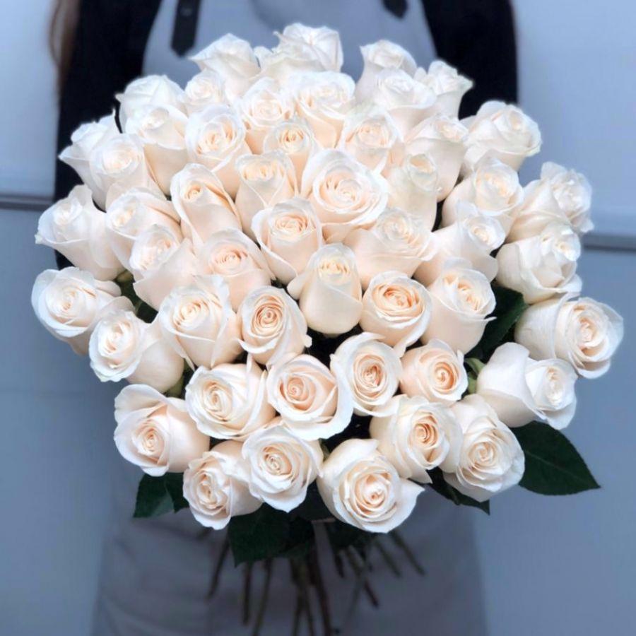 Белые розы Эквадор 60 см от 11 штук