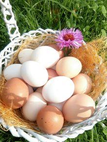 Яйцо куриное домашнее 1 дес.