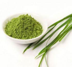 Витграсс (Лиофилизированный порошок из сока ростков пшеницы) 50 гр.