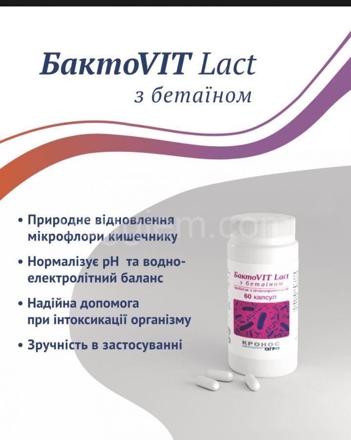 Пробиотики Бакто  Vit Lact  с бетаином,60 капсул