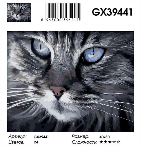 Картина по номерам на подрамнике GX39441