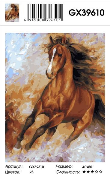 "Картина по номерам на подрамнике GX39610, Брагинский Артур, ""Вихрь"""