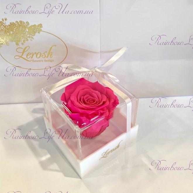 """Бутон розы в коробке фуксия """"Classic"""""""