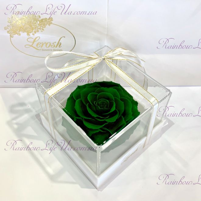 "Бутон розы в коробке зеленая ""Lux"""