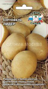 Картофель Лидер (Седек)