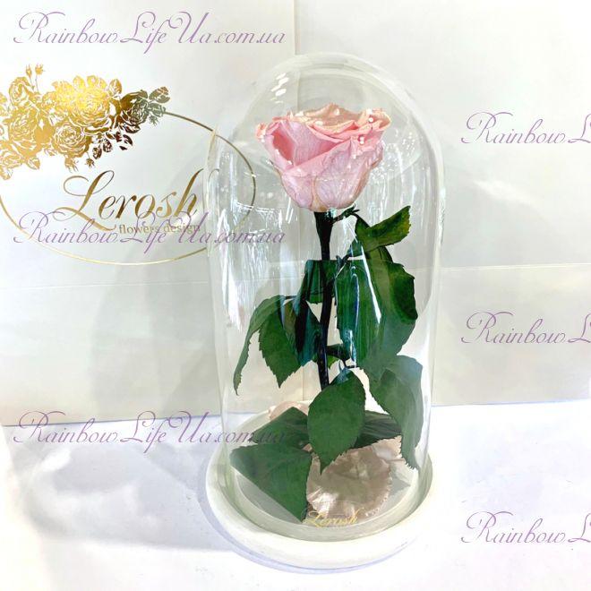 """Роза в колбе розовый перламутр 27 см """"Classic"""""""