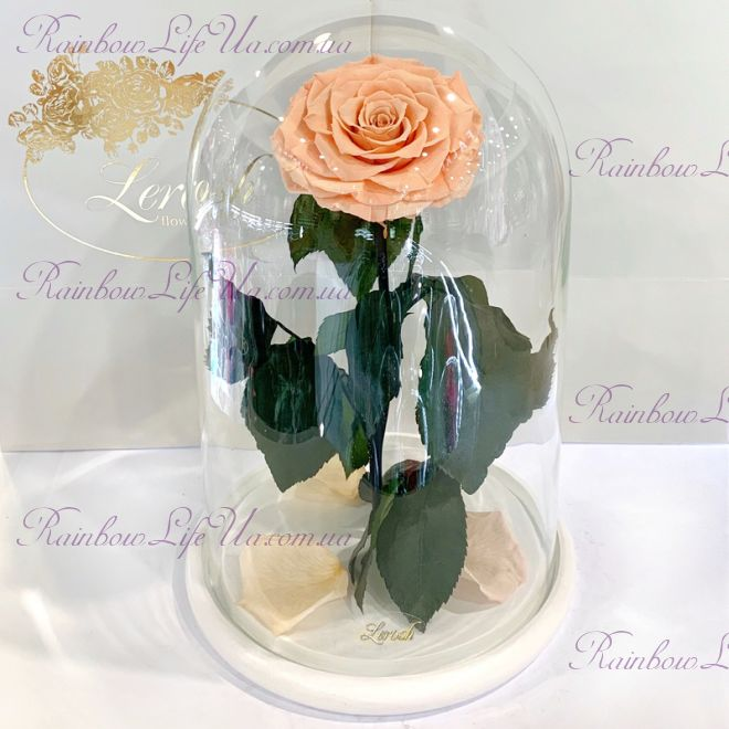 """Роза в колбе персиковая 33 см """"Lux"""""""