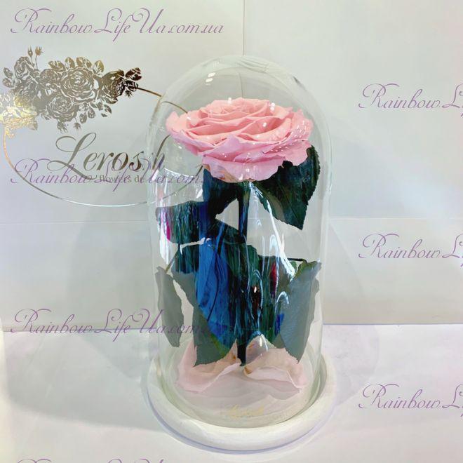 """Роза в колбе нежно - розовая 27 см """"Premium"""""""
