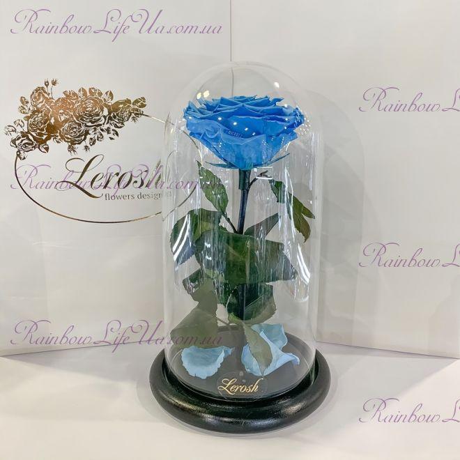 """Стабилизированная роза в колбе 27 см голубая """"Premium"""""""