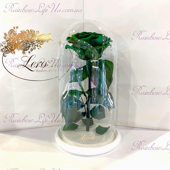"""Стабилизированная роза в колбе 27 см зеленая """"Premium"""""""