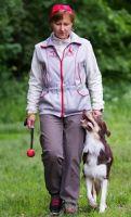 Онлайн-семинар 'Моя послушная собака' (Татьяна Шаманова)