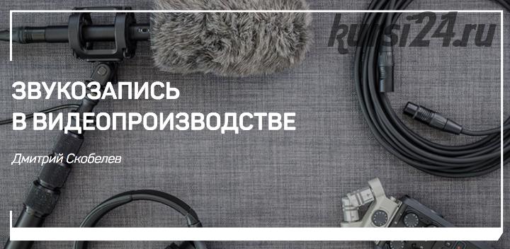 Звукозапись в видеопроизводстве (Дмитрий Скобелев)