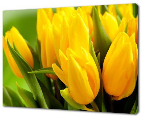 Картина на холсте Желтые тюльпаны