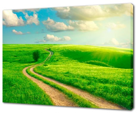 Картина на холсте Дорога через луга
