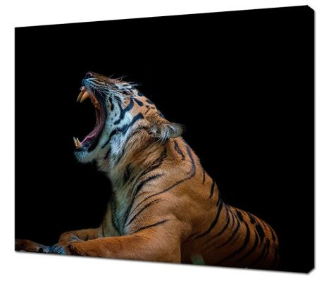 Картина на холсте Рев тигра