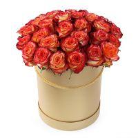 35 оранжевых роз в шляпной коробке