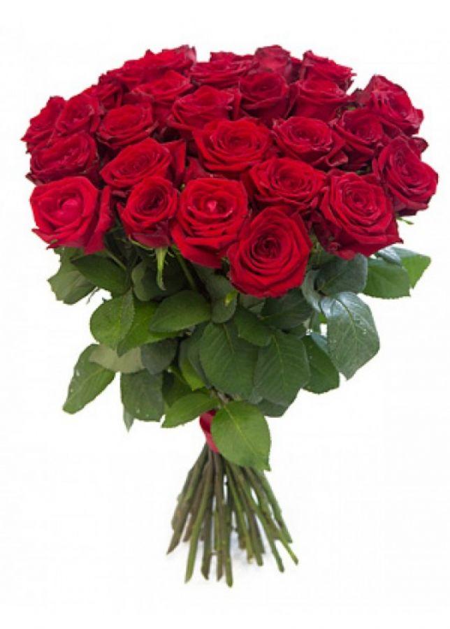 Розы красные от 15 шт (40 см)