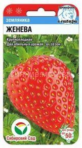 Земляника Женева 10шт (Сибирский сад)