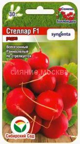 Редис Стеллар F1 60шт (Сибирский сад)