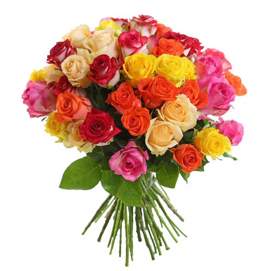 Розы микс 50 см