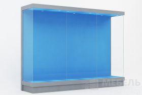 Обзорная музейная витрина 3