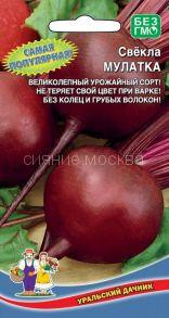 Свекла Мулатка (Уральский Дачник)