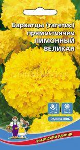 Бархатцы Лимонный великан (Уральский дачник)