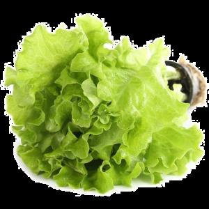 Салат Китай 300г