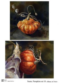 Pumpkins set 18